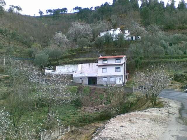 Turismo Rural (particular) - Lamego - House