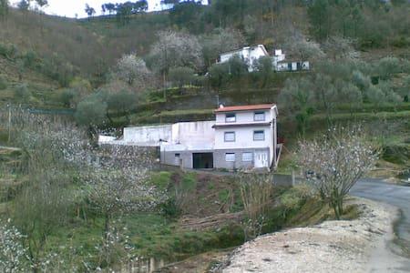 Turismo Rural (particular) - Lamego