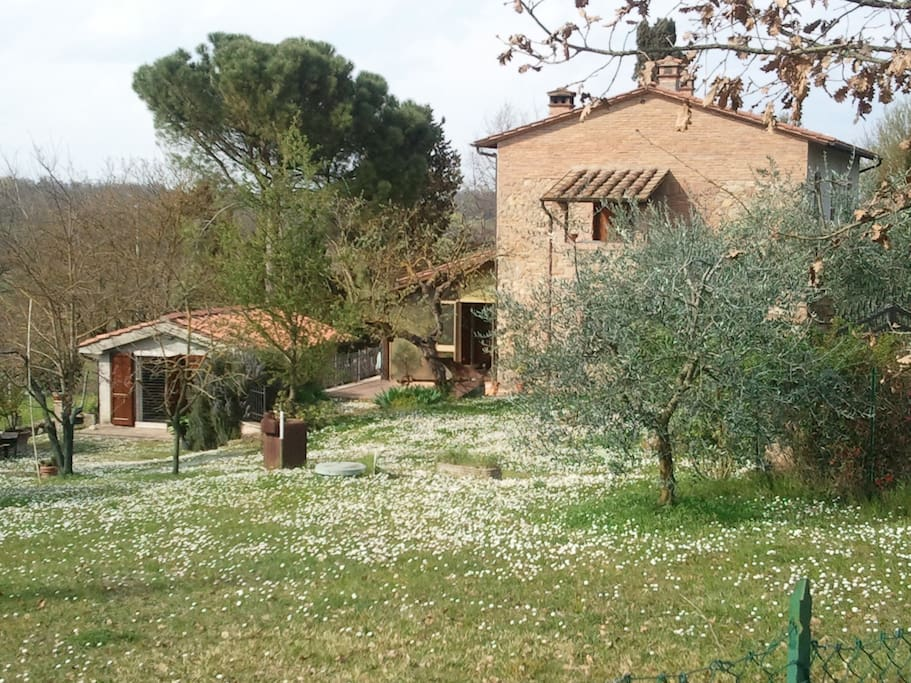 Casa di campagna in toscana maisons louer chiusi for Casa di campagna toscana