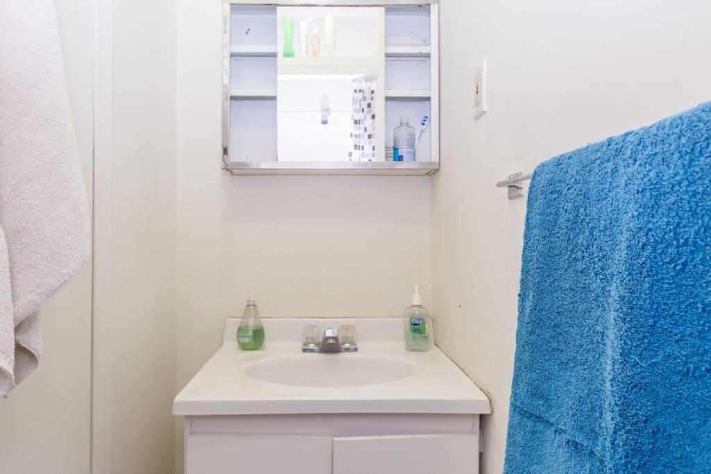 Shower sink