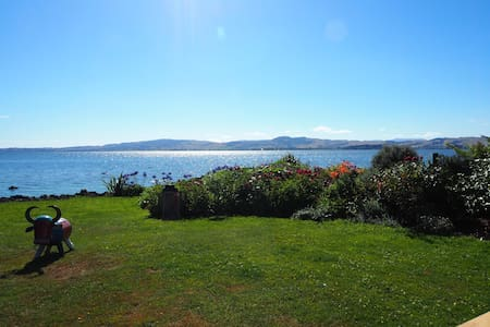 Absolute Lakefront Stay Twin Room - Rotorua