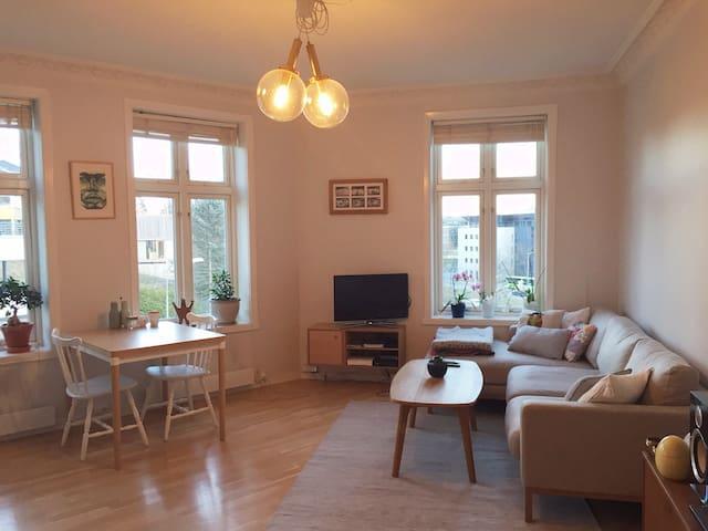 Bright and cozy apartment near Oslo centrum - Oslo - Condominio