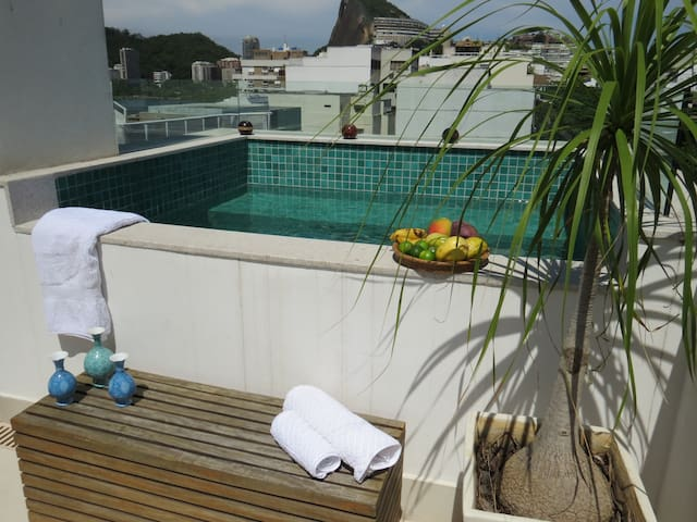 Charming Penthouse in the best quartier in Ipanema - Rio de Janeiro - Apartment