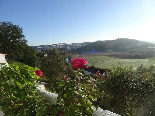 Typical Alentejo House & great view - Odemira - Villa