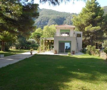 Brunello Apartments 1 - Paralia Agios Ioannis - (ไม่ทราบ)