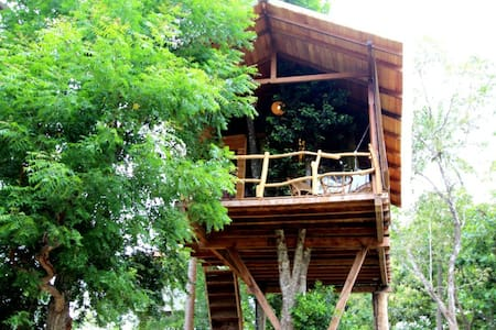 Romantic Luxury  Tree House  - Tangalle