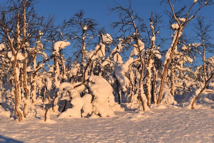 Historisk hus midt i verdensarven - Rjukan - Dům