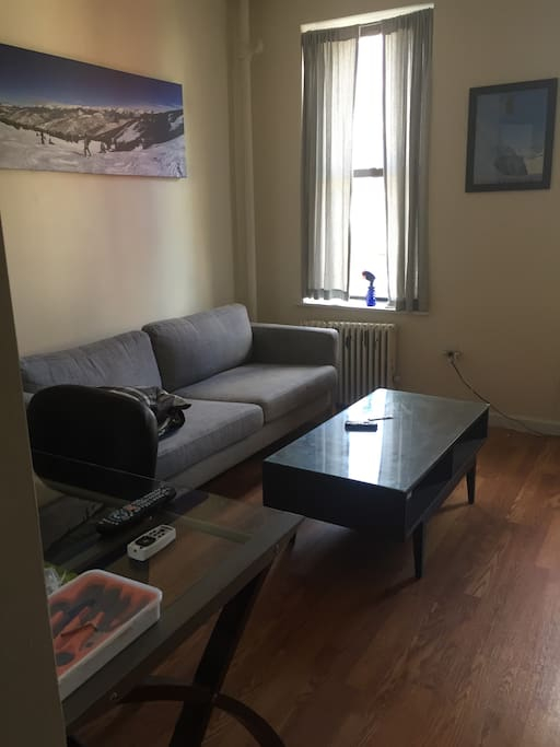 Upper East Side 1 Bedroom Near Central Park Apartments For Rent In New York New York United