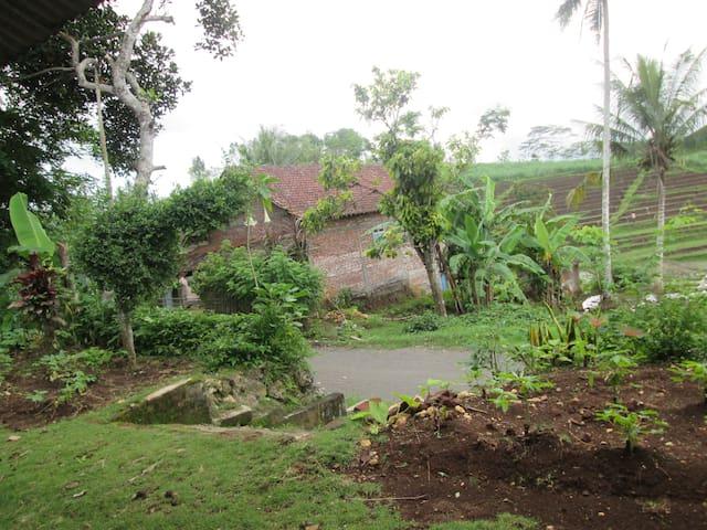 village home - Surabaya - House
