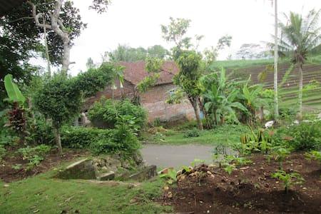village home - Surabaya