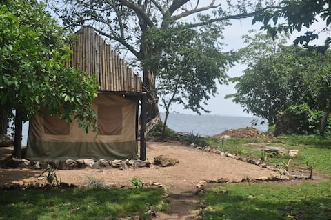 Banda Island - Safari Tent