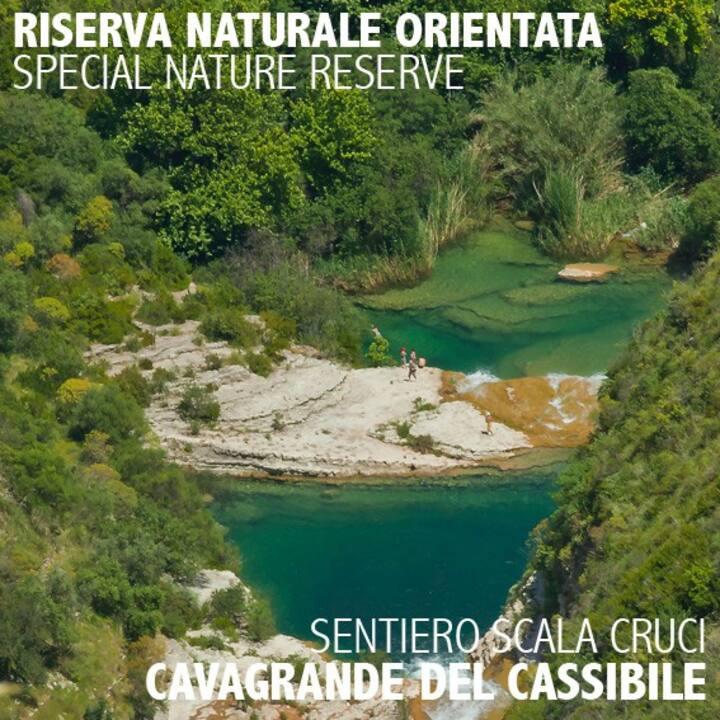 RURAL Colorful RoOm CarrubBELLA_ Cavagrande