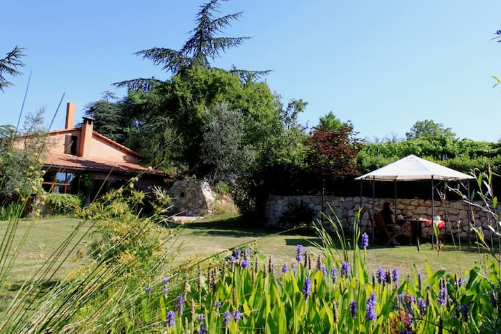 Inmo b&b / Silenzio e Natura - Orvieto - Bed & Breakfast