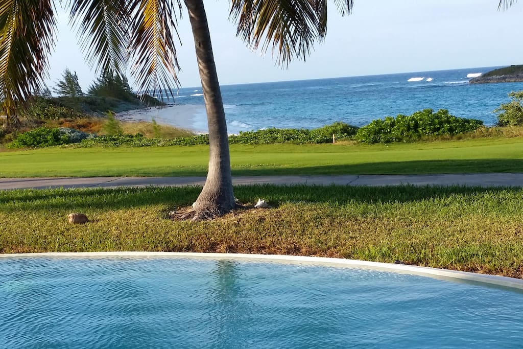 Take a dip in the infinity pool with the Atlantic Ocean roaring behind you.