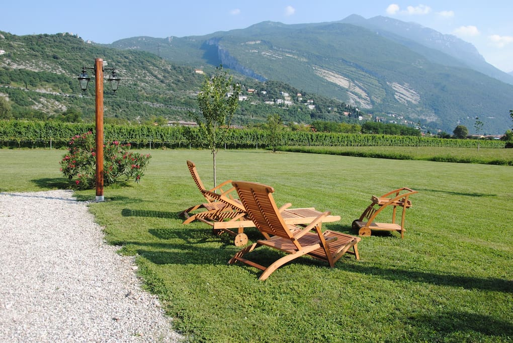 Chilling area in the garden. Vineyards in the background.