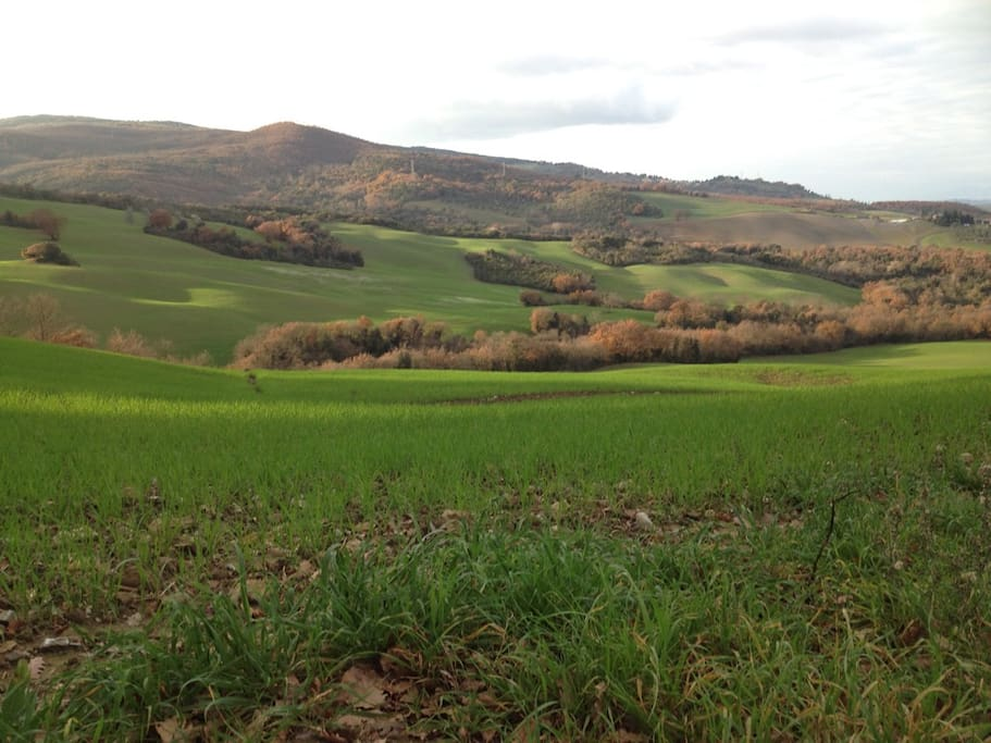Panorama valle di Cecina dalla finestra