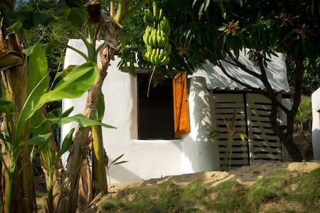Cabane 4 lits, jungle de Minca-7km de Santa Marta