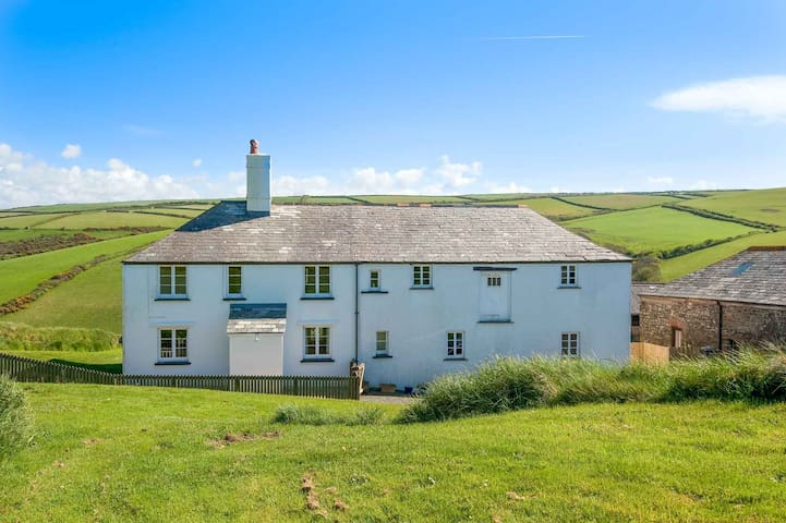 Trevigue Cottage - Crackington Haven - House