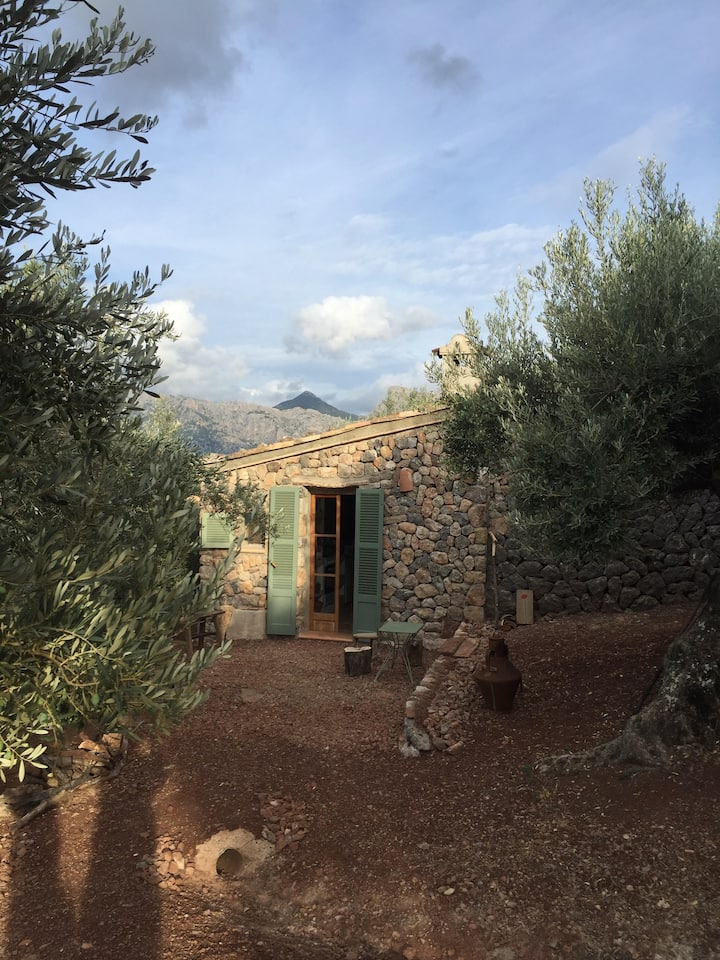S'Aufabaguera Casita in an olive farm