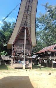 Tondon sibata