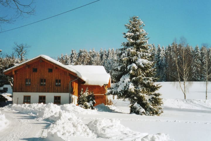 Lovely Holiday Home in Viechtach near the Forest