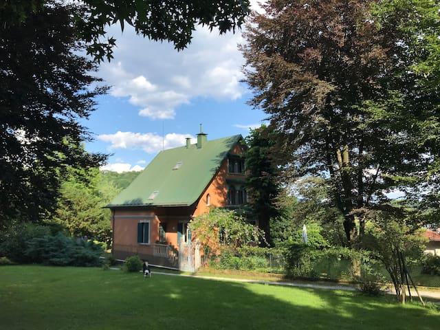 Friuli's Hills. Sport, nature, relax