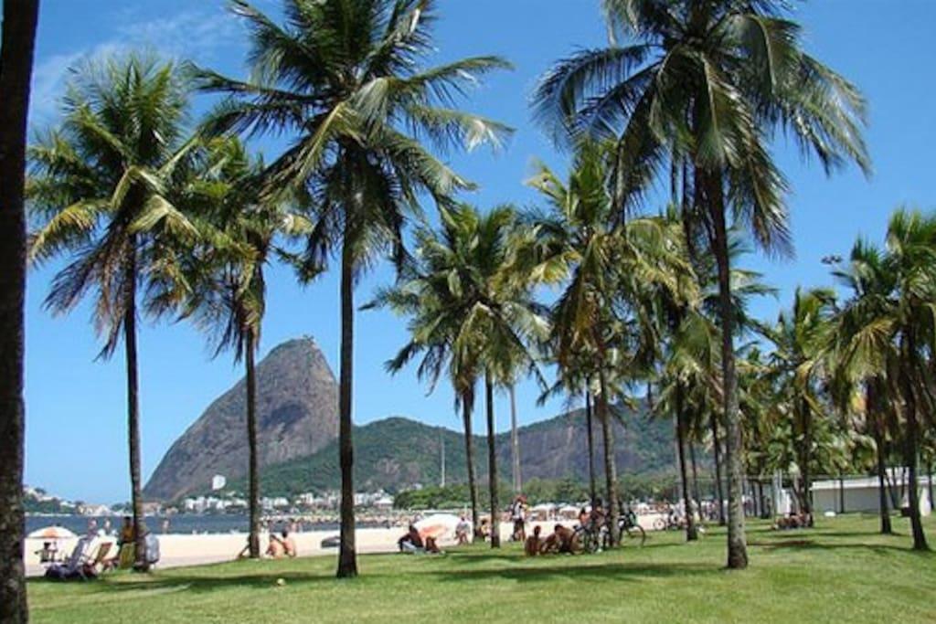 Aterro do Flamengo, 100m de casa / from home.