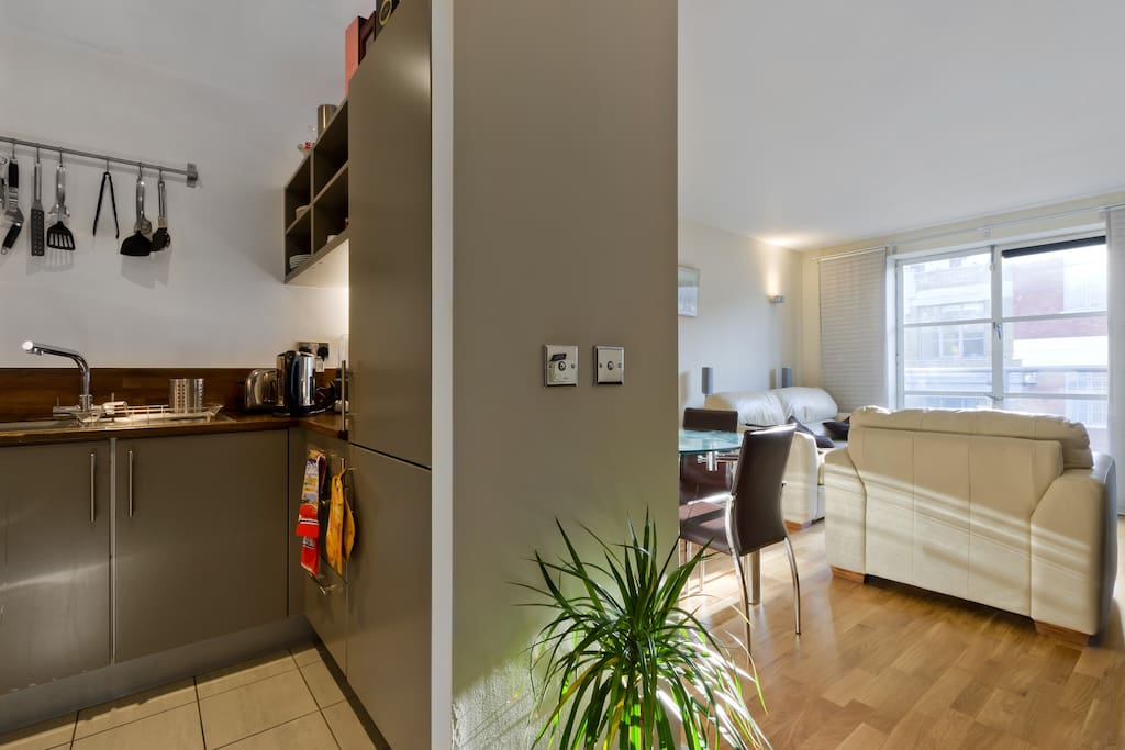 modern 2 bed flat in central london apartments for rent in london