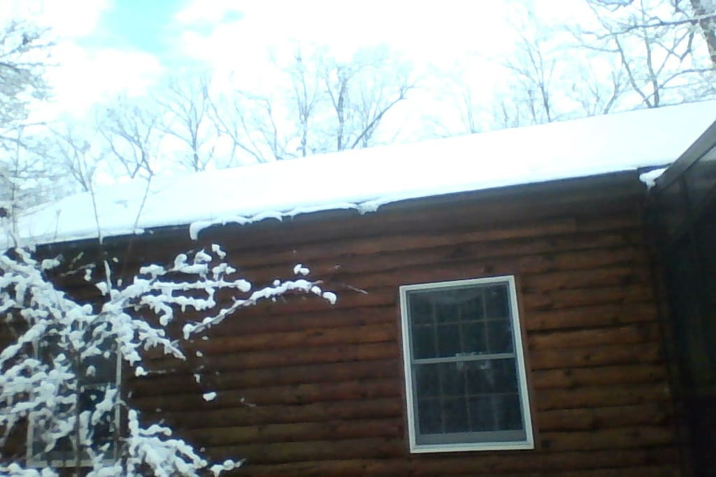 Rear of the log cabin