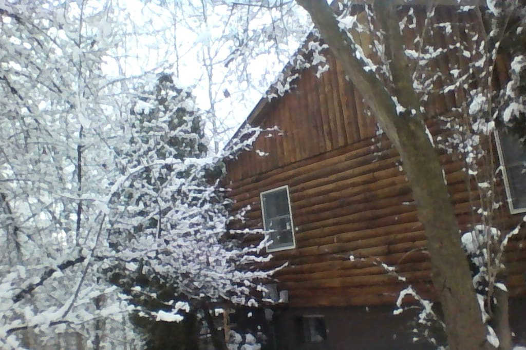 Side of log house on a snowy day