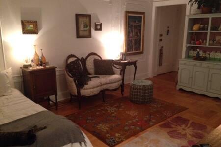 Charming Studio in Sunnyside - Queens - Apartment