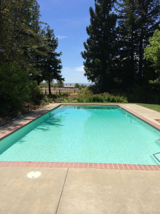 Private 20 by 50 foot pool