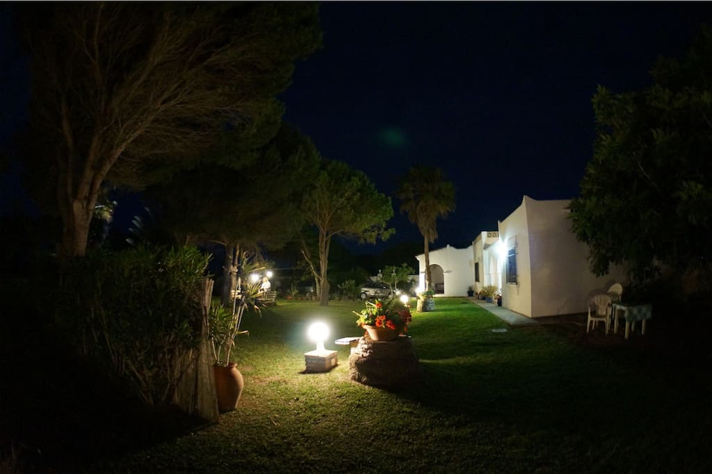 night lights in fantastic private garden