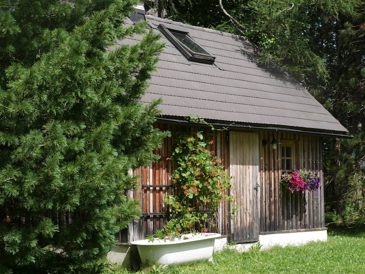 tiny lodge