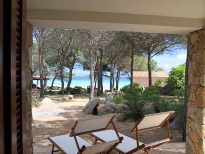 Villa Pineta on the sea - Porto Taverna