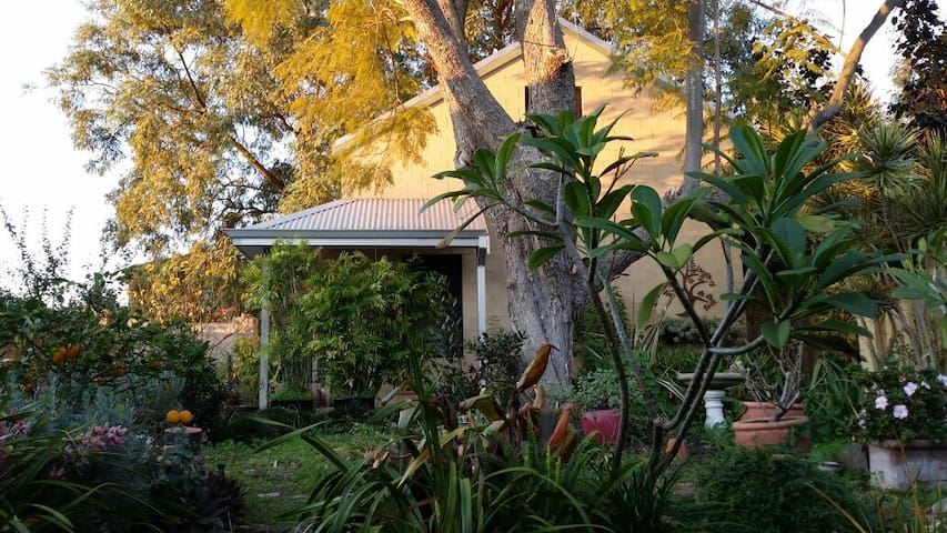 Studio home in quiet garden setting - South Perth - Rumah