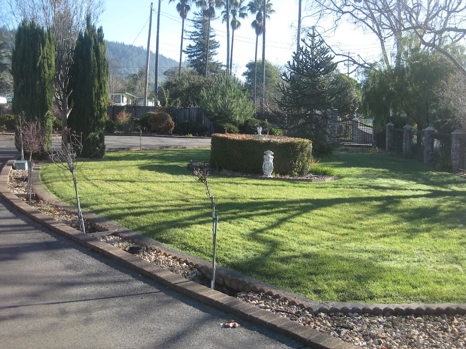 The front yard