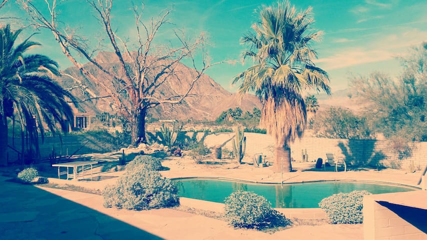 Your Stargazing Desert Oasis  - Borrego Springs - Haus