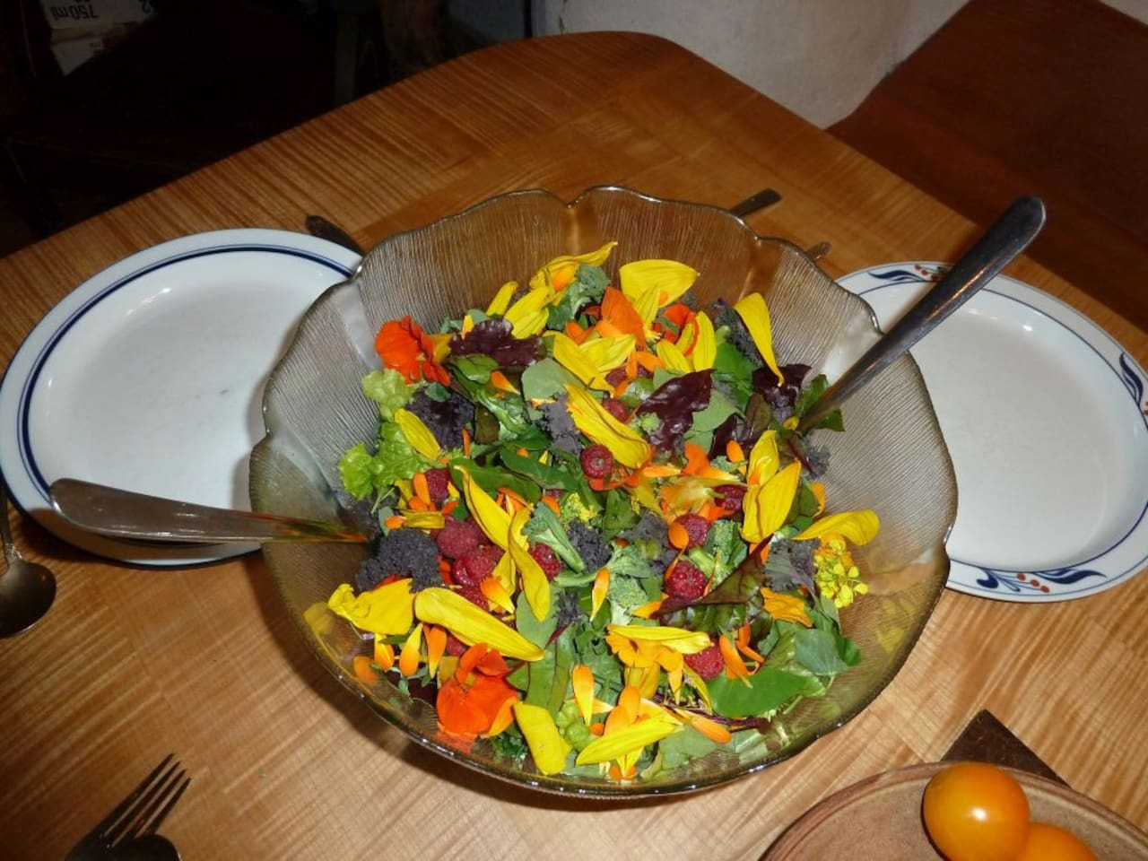 A salad with a little of everything from the garden