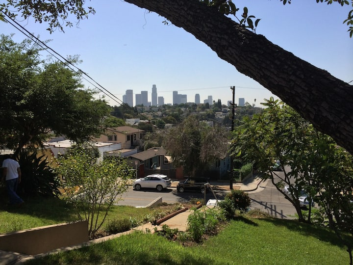 Echo Park Angels View