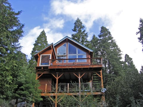Cabin in the Giant Sequoias