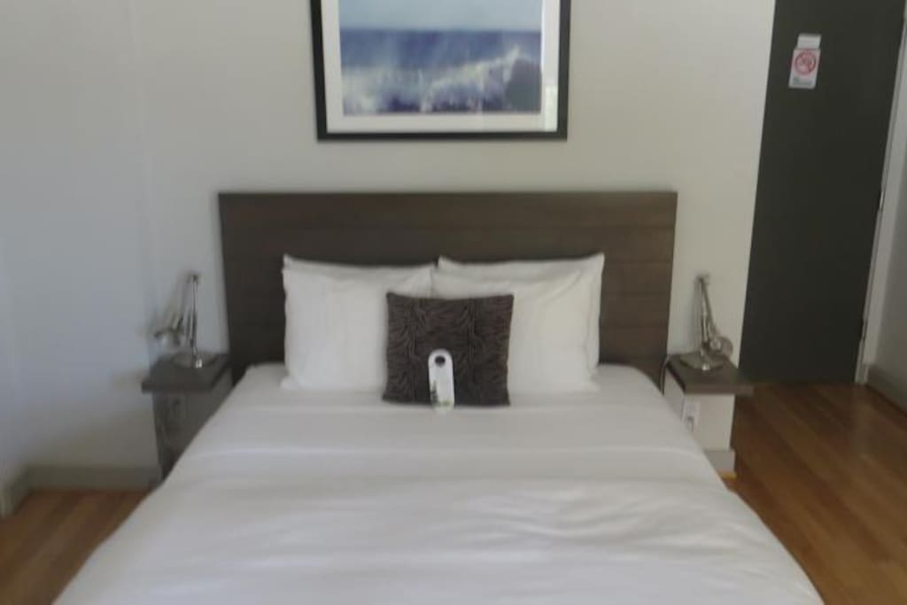 Organic eco green mattress with 500 count cotton sheets and feather down comforter. Sleeps two.