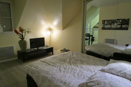 Lovely fully equipped studio near Disneyland Paris - Apartament