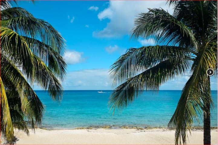 Beautiful Beachfront Condo Private