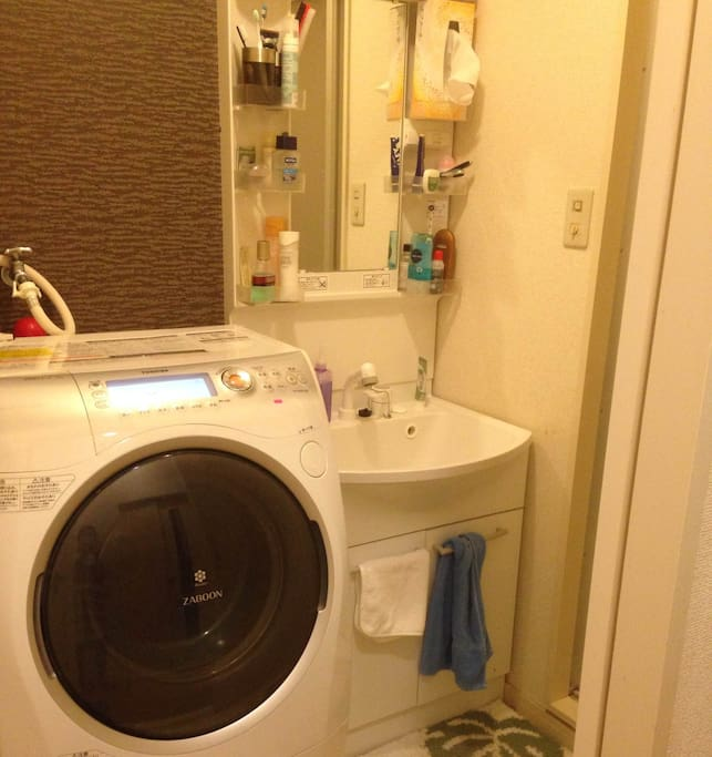Washing machine with dry, iron function also