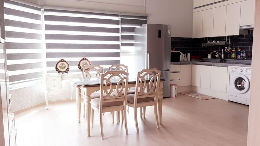 Newly renovated loft style apartment