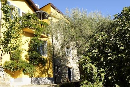 Dorfhaus mit Garten u. Weitblick - Borgomaro - House