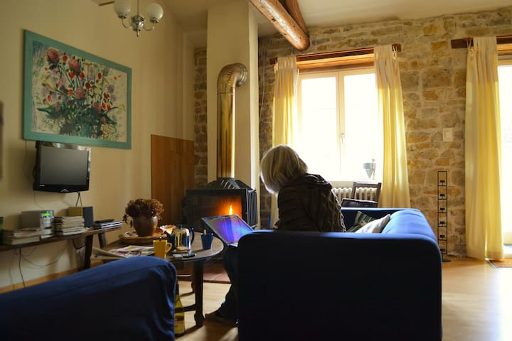 Rustige en gezinsvriendelijke gîte - Hurecourt - House