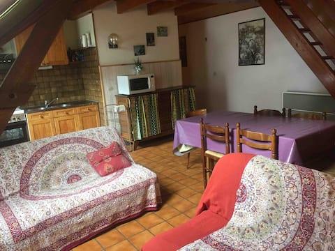 Appartement montagne 6-8 places