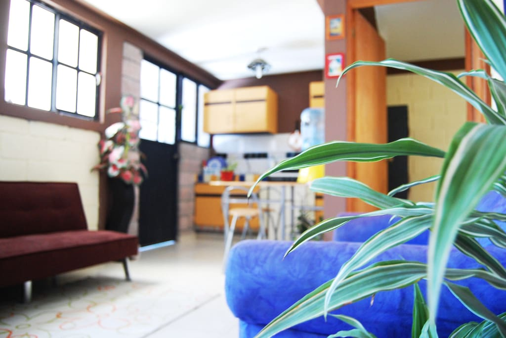 Sala comedor, sofá cama